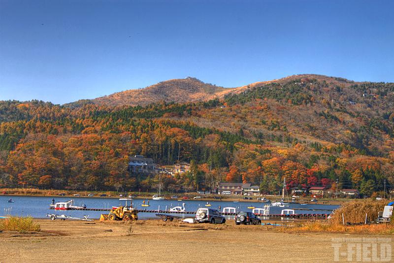 山中湖の紅葉 平野