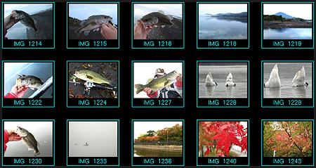 20081025-081025.jpg