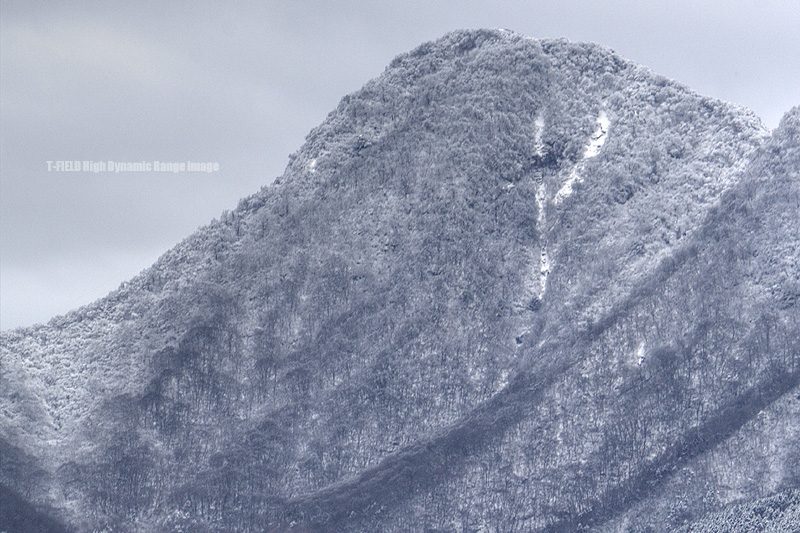 雪化粧した金時山