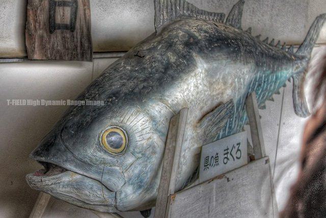 県の魚 まぐろ