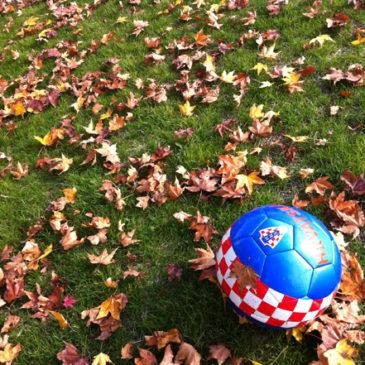 サッカーボールに恋して
