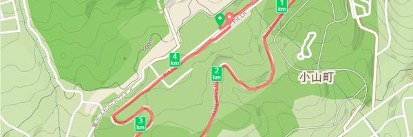 サーキットコースをマラソン|富士マラソンフェスタ2015 in FUJI SPEEDWAY